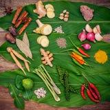 Vario di alimento tailandese che cucina gli ingredienti ed il passo di danza rosso del curry della spezia Immagine Stock