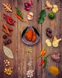 Vario di alimento tailandese che cucina gli ingredienti ed il passo di danza rosso del curry della spezia Fotografie Stock Libere da Diritti