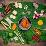 Vario di alimento tailandese che cucina gli ingredienti ed il passo di danza rosso del curry della spezia Immagini Stock Libere da Diritti