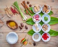 Vario di alimento tailandese che cucina gli ingredienti per il passo di danza rosso del curry della spezia Immagine Stock