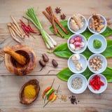 Vario di alimento tailandese che cucina gli ingredienti per il passo di danza rosso del curry della spezia Fotografia Stock