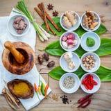 Vario di alimento tailandese che cucina gli ingredienti per il passo di danza rosso del curry della spezia Immagini Stock