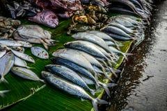 Vario genere di pesce sulla foglia della banana sul mercato tradizionale di bogor Indonesia immagine stock libera da diritti