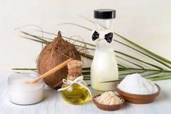 Vario insieme di prodotti della noce di cocco su fondo bianco Fotografia Stock