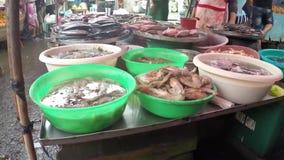 Vario pesce visualizzato e venduto al mercato delle pulci della via archivi video
