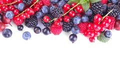 Vario primo piano delle bacche compreso i mirtilli, i lamponi, le more e l'uva passa su un fondo bianco Isolato immagine stock libera da diritti