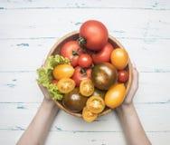 Vario variopinto delle varietà differenti delle verdure organiche dell'azienda agricola di pomodori, ortaggi freschi in ciotola d immagini stock libere da diritti