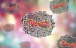Variola virus illustration Stock Image