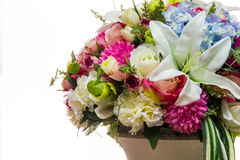 Variopinto dei fiori della plastica di varietà Immagini Stock