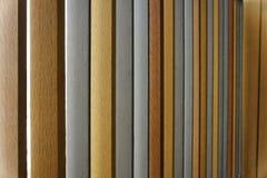 Variopinto della parete di legni nella sala Immagine Stock