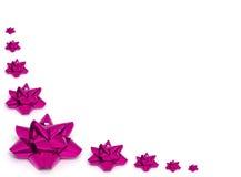 Varios arqueamientos rosados de la hoja foto de archivo libre de regalías