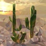 varios cactus en el fondo de la puesta del sol en el desierto, paisaje de la tarde, mosaico multicolor fotos de archivo libres de regalías