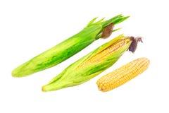 Varios oídos del maíz joven en un primer ligero del fondo Fotos de archivo