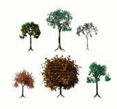 Various 3d Trees Royalty Free Stock Photos
