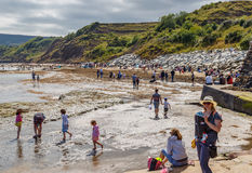 Various adults and children on the beach and in the sea. Stock Images