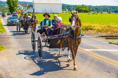 Various Amish Buggies In Lancaster County Royalty Free Stock Image