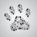 Various animal footprints Stock Images