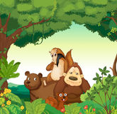 Various animals. Illustration of various animals in the forest Royalty Free Stock Image