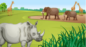 Various Animals. Illustration of Various animals in a beautiful nature Stock Images