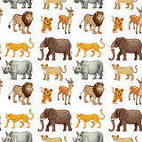 Various animals Royalty Free Stock Photos