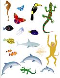 Various Animals. Vector bases illustration of various animals on white background Stock Photo