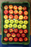 Various apples in crates at farmers market. Three types of apples on the retail market Stock Photography