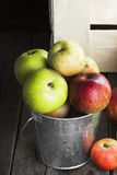 Various apples in metal bucket on a wooden background Stock Images