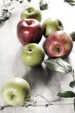 Various apples on a wooden tabletop Stock Images
