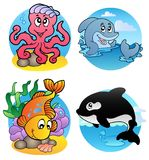 Various aquatic animals and fishes Royalty Free Stock Images