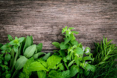 Various aromatic herbs and spices from garden green mint ,fenne. L ,rosemary,oregano, sage,lemon thyme and peppermint set up on old wooden background royalty free stock photography