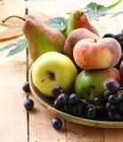 Various autumn fruits Stock Photo