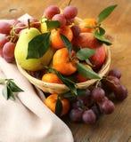 Various autumn fruits Royalty Free Stock Photography