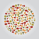 Various autumn icons in circle Royalty Free Stock Photography
