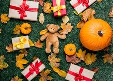 Various autumn leaves and orange pumpkins near teddy bear toy Stock Photography