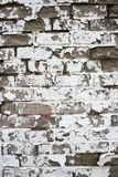 Various Backgrounds Royalty Free Stock Image