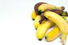 Various bananas baby bananas and red bananas on white background stock photos