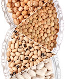 Various beans Stock Images
