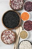 Various beans in bowls. Set of various beans in bowls: white, black, purple and red speckled beans, red and green lentils. White wooden background, top view Royalty Free Stock Photos