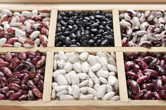 Various beans in box Royalty Free Stock Image