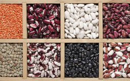 Various beans in box Royalty Free Stock Images