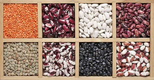Various beans in box Royalty Free Stock Photos