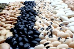 Various beans close up Stock Images