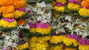 Various beautiful flowers garlands in asia market, Mumbai, India stock footage