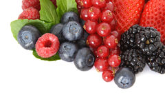 Various berries. Pile of mixed berries. All on white background Royalty Free Stock Photo