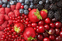 Free Various Berries Background Royalty Free Stock Images - 33132949