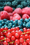 Various berries background. Shallow depth of field Stock Photo
