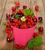 Various berries in a bucket Stock Photo