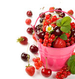 Various berries in a bucket Stock Images