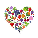 Various of berries in heart shape. Stock Image