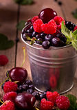 Various berries in pail. Small tin pail of various berries stock photo